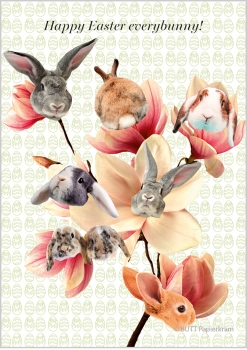 Celebration »everybunny«