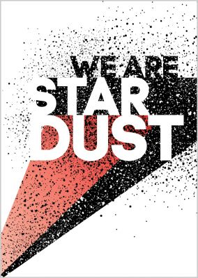 »We are stardust«