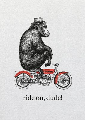 Dipster »Ride on dude«